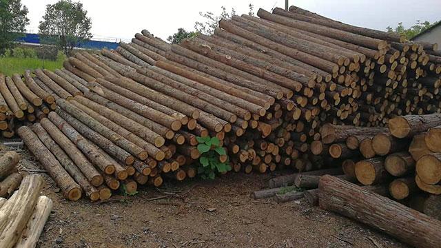 生态木桩厂家