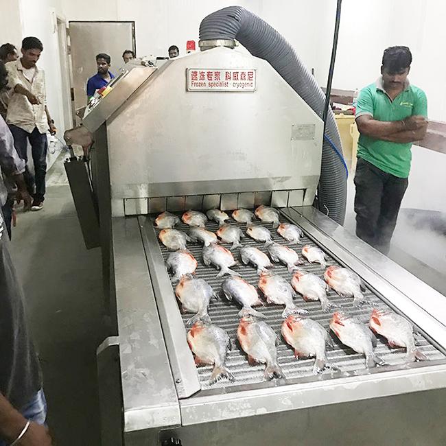 海鲜液氮速冻机