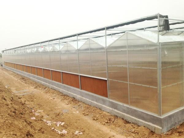 智能玻璃温室大棚的优点有哪些?在农业种植方面如何发挥优势