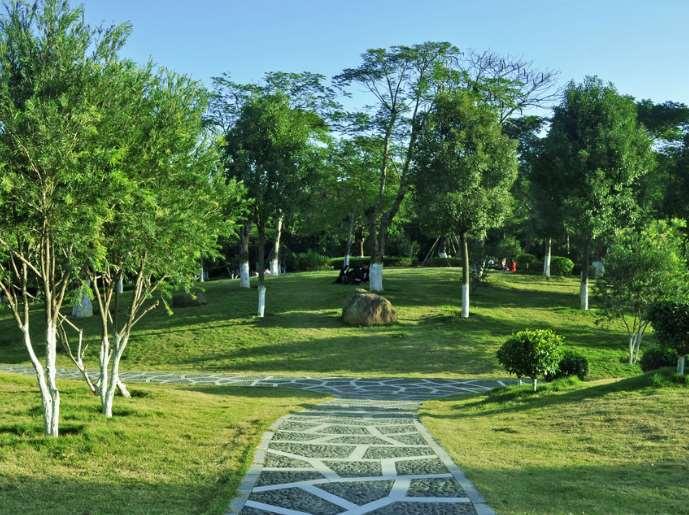 园林绿化实施中有哪些事项要关注