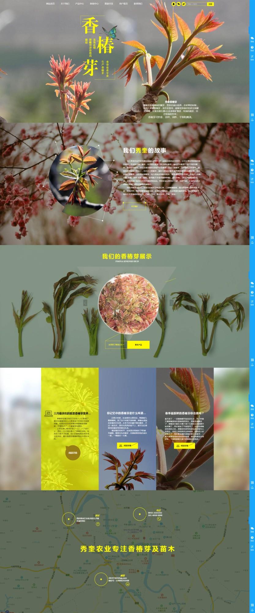 内江秀奎农业开发网站建设