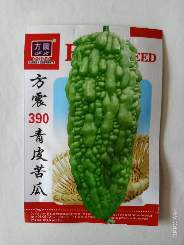方震390青皮苦瓜