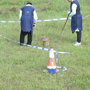 安全应急演练策划