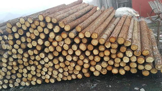 圆木桩加工厂