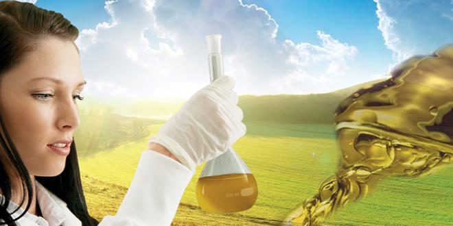 植物基成型油