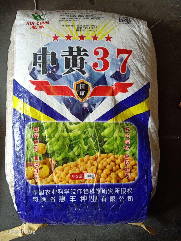 黄豆种子批发