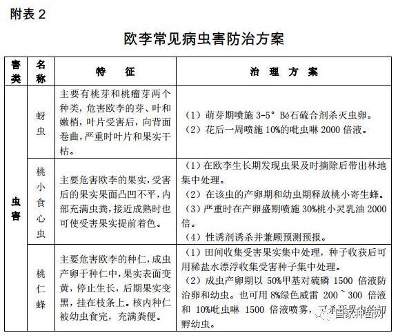 欧李原料林可持续培育指南