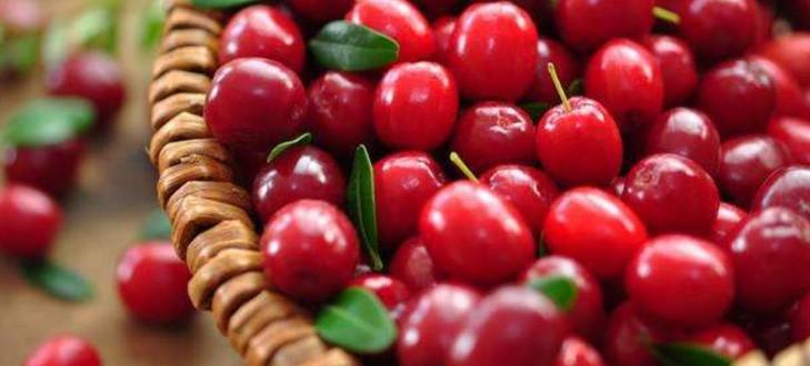 蔓越莓有什么營養價值?