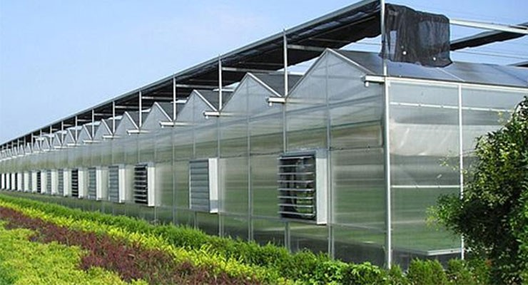 现代新型温室大棚设计图