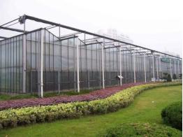 温室大棚的种类和特点