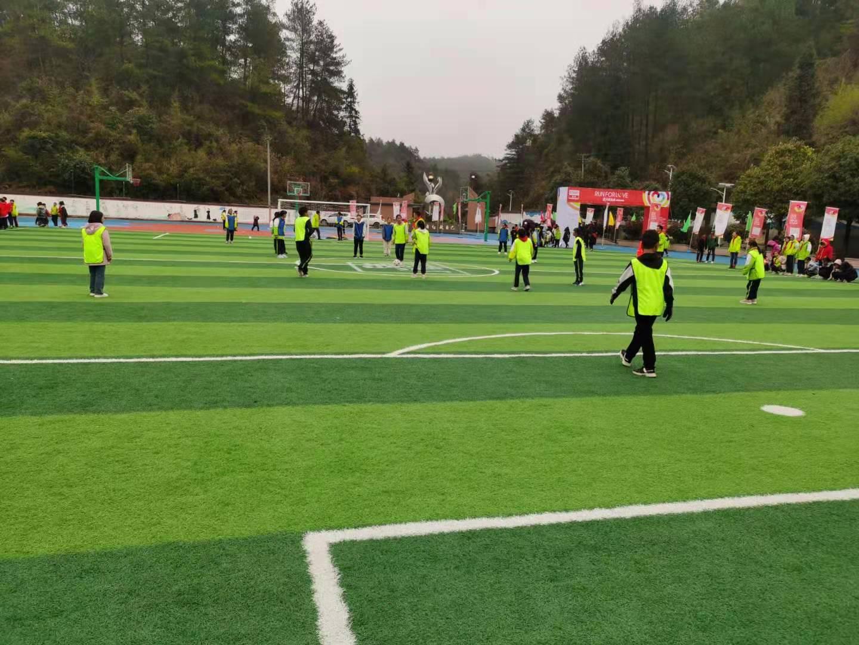人造足球场草坪运动场的草种类型有哪些?