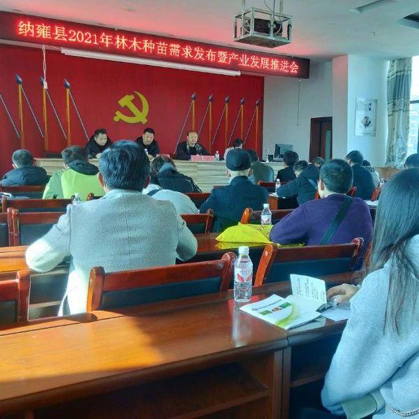 贵州省纳雍县召开2021年林木种苗需求发布暨产业发展推进会