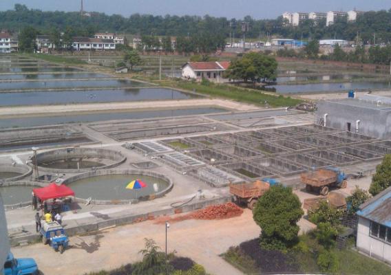常见的几种污水处理填料和辅助材料介绍
