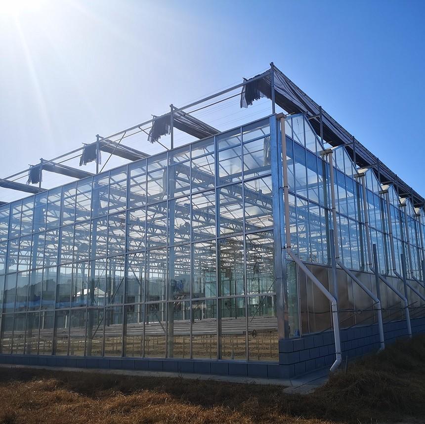 玻璃温室的规划设计的主要几个方案?