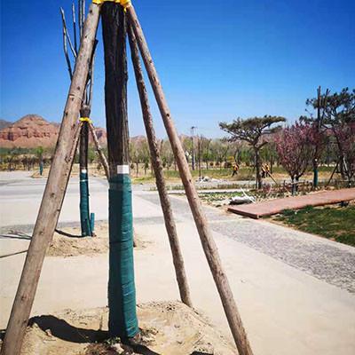兰州绿化圆木支撑杆公司