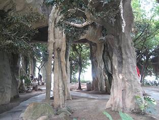 仿木仿树制作