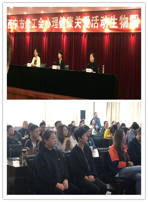 青海玫霖社会工作服务中心简报