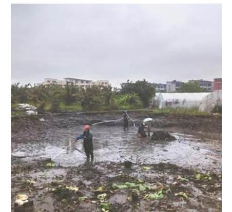 池塘清淤有什么好方法