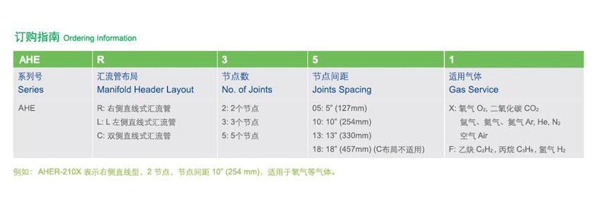 AHEC-310X(双侧直线式汇流管)的简介