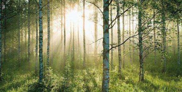 内蒙古大气环境影响评估