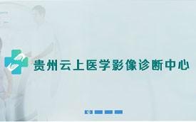 网站建设案例:贵州云上医疗