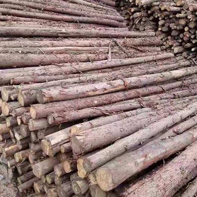 鄂尔多斯绿化植树支撑杆供应厂家