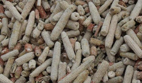 玉米芯粉碎机让最常见的玉米芯也变得有价值!