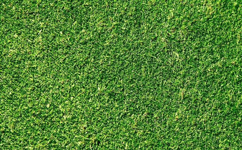 高品质草坪如何开展水分保养