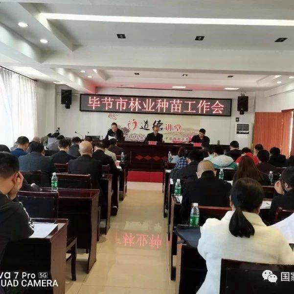 2020年贵州毕节市林木种苗工作会议召开