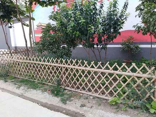 简易的竹篱笆制作方法分享