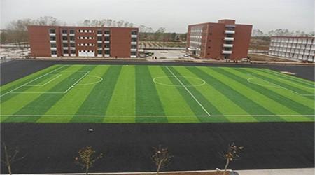 运动草系列——模拟真实草足球场