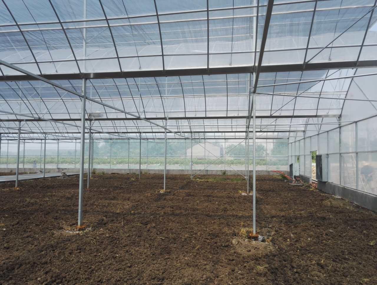 顶部气窗薄膜温室