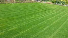 人造草坪施工前的各项准备