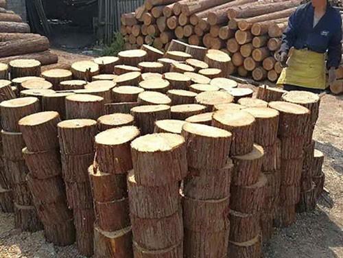 短木桩采购