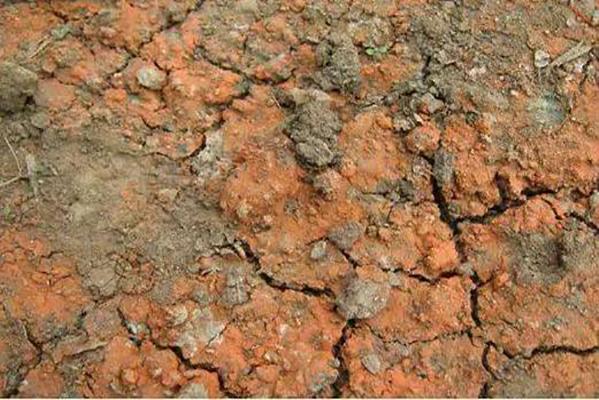 内蒙古固废所|土壤修复和固废处理有什么关系?|土壤氡浓度检测的必要性