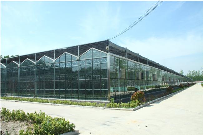 玻璃温室大棚的构造与优点