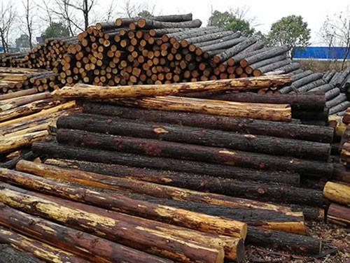 江苏生态木桩