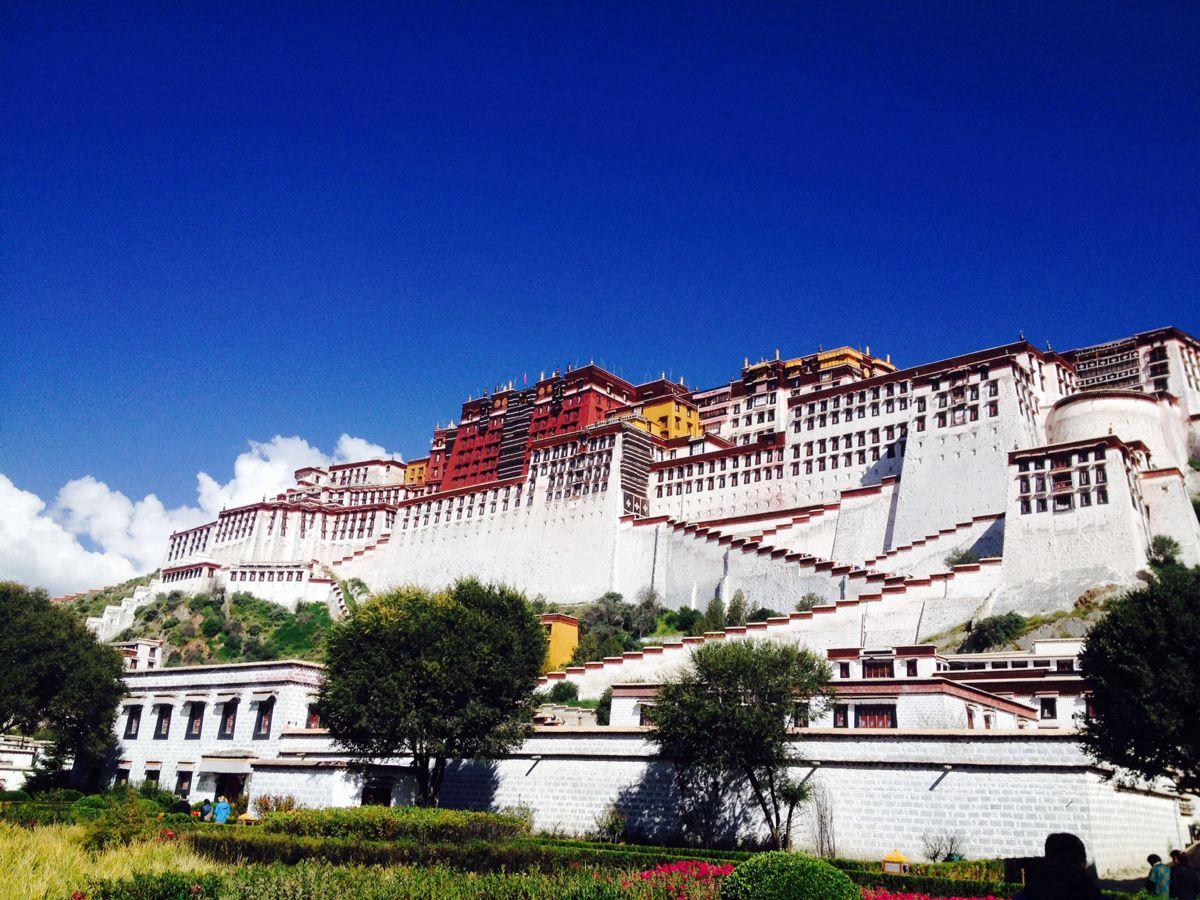 2019年西藏高考志愿填报指南参考
