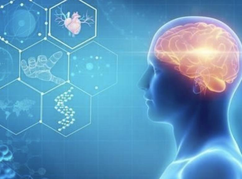 中科西部干细胞研究院:干细胞对淋巴细胞的增值作用