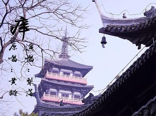 江苏扬州《氧》MV旅游