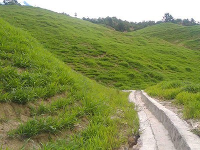 植被混凝土植草