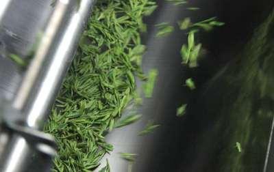 茶叶机械设备烘干机的使用保养