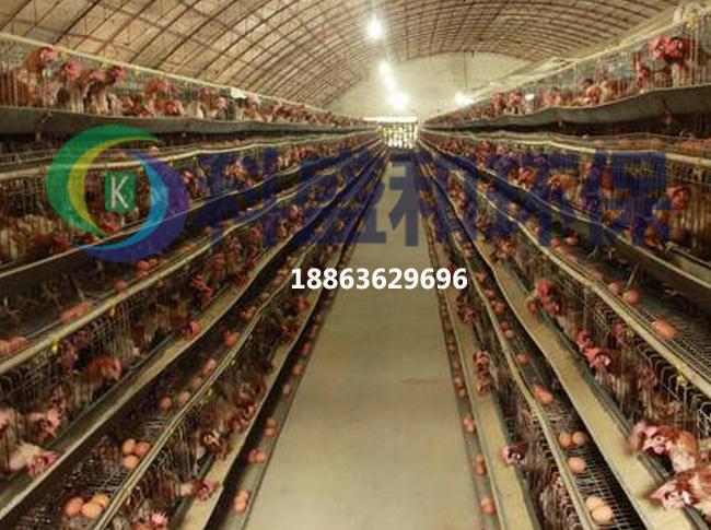 山东处理量大的鸡粪脱水压滤机设备案例