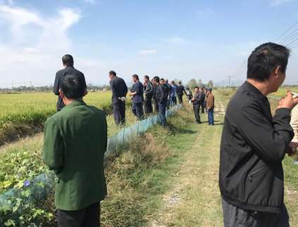水稻种植的播种要求分析