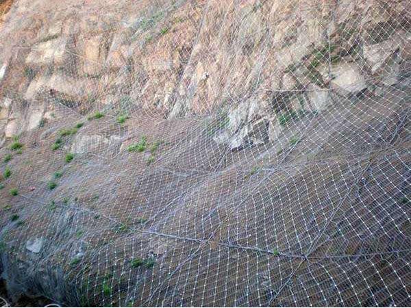 山体防护网
