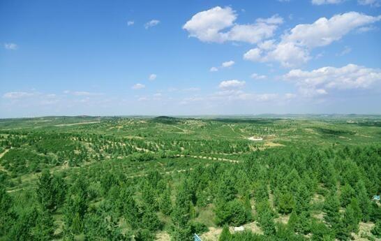 中国将要消失的沙漠!毛乌素沙漠即将从地图上彻底抹去