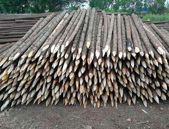影响杉木桩实际使用的因素
