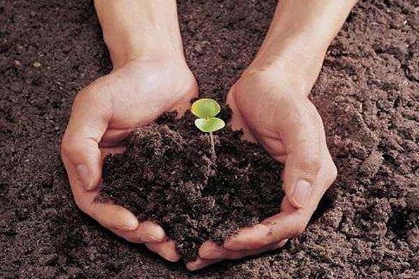 内蒙古固废所 土壤修复和固废处理有什么关系?
