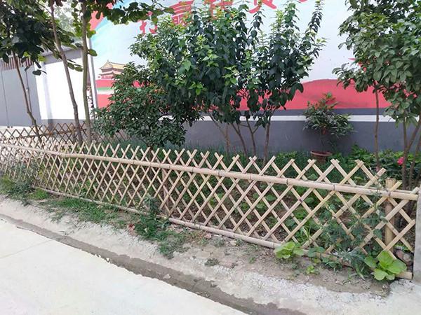 竹籬笆制作