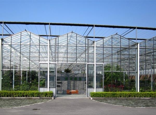 如何提高玻璃温室大棚的采光度?